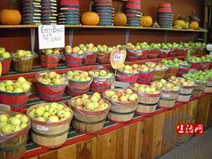 applesonshelf