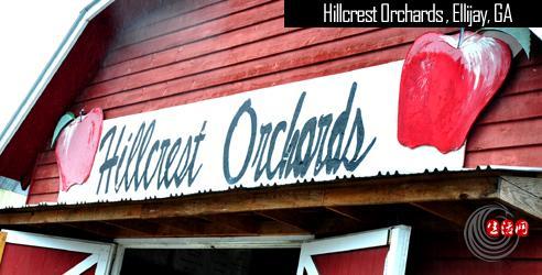 hillcrest-orchards-ellijay-