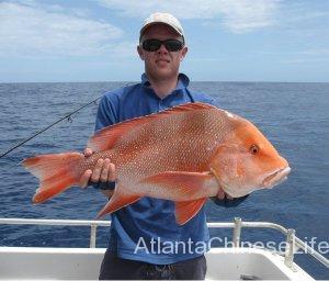 reef-fishing-bait-01