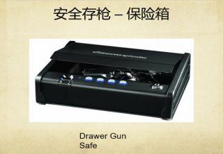 gun_11