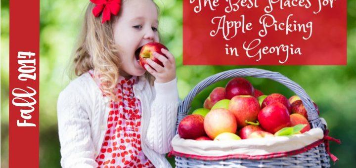 又是采摘季 | 苹果果园