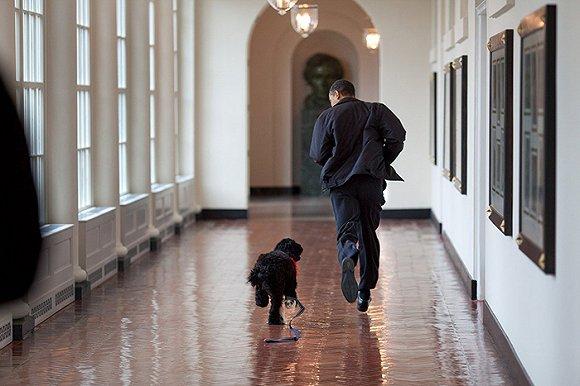 活动|11月11日 总统背后最重要的一个人 空降亚特兰大