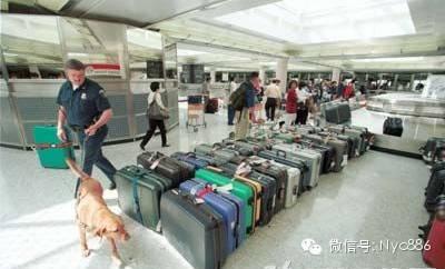 入境美国,遭海关撒网式严查,回国/返美入境携带的物品大全。