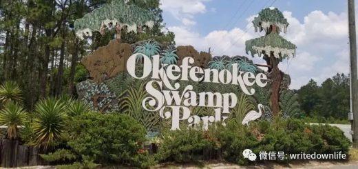 Okefenokee Swamp 探险记