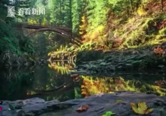 北美 | 美国比基尼少女遭损友恶搞 18米高处被推落瀑布塘