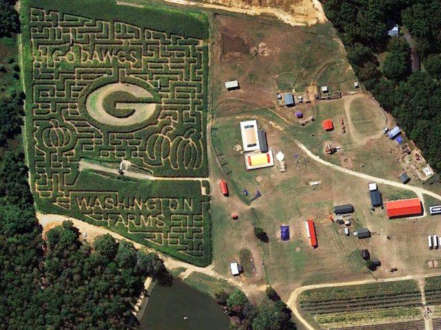 摘南瓜、逛玉米迷宫、各种球季农园乐活动应有尽有!