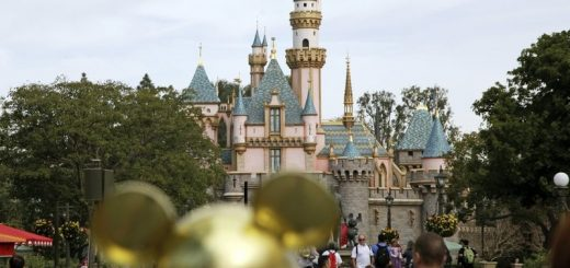 佛州迪士尼门票涨价超过两成 这两个时间点最贵
