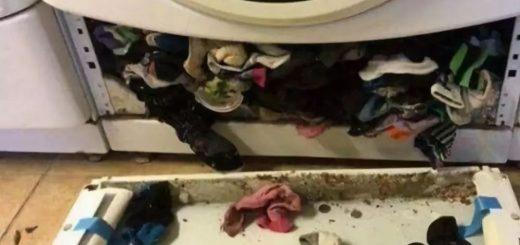 """洗衣机吃袜子是真的!她拆开惊见""""袜子山""""傻眼…"""