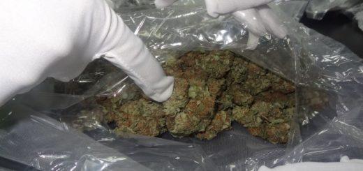 """海归带回含大麻油电子烟 与朋友共吸食被""""一锅端"""""""