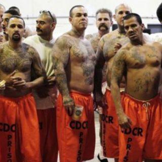 被轮奸、强暴、凌辱…这是章莹颖案凶手下辈子在重刑监狱里的日常