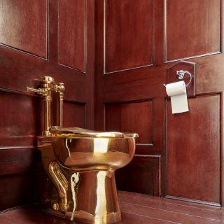 价值百万英镑纯金马桶被盗 英国布伦海姆宫建筑受损