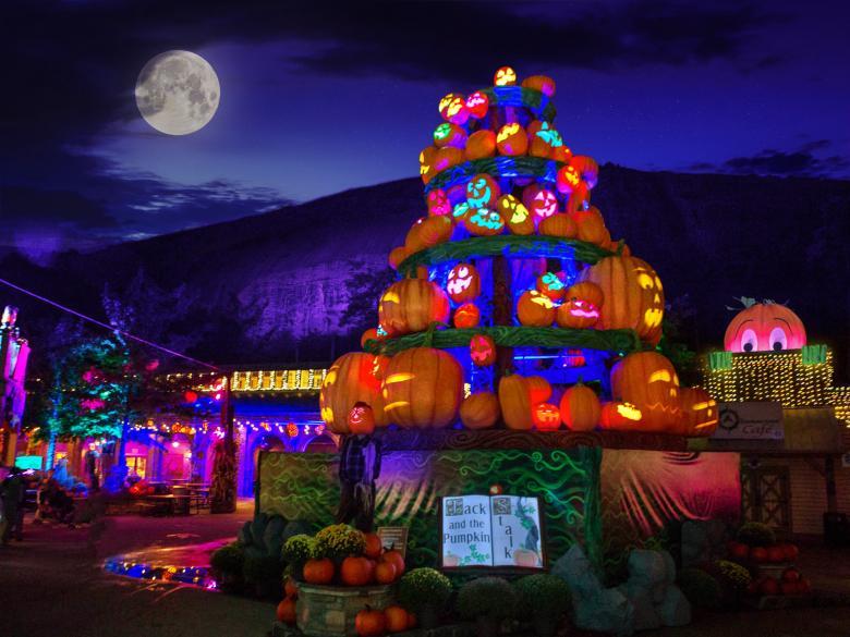 周末好去处 | 南瓜节(Pumpkin Festival)